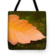 Leaf On Moss Tote Bag by Adam Romanowicz