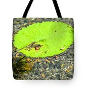 Leaf On The Water Tote Bag