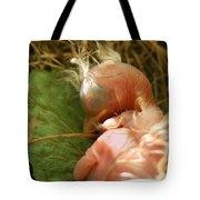 Leaf Pillow Tote Bag