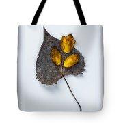 Leaf Study Tote Bag
