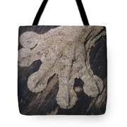 Leaf-tailed Gecko Foot Tote Bag