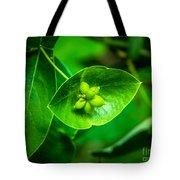 Leaf With Seeds Tote Bag