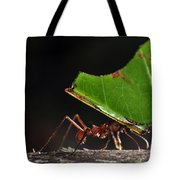 Leafcutter Ant Tote Bag