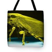 Leafhopper, Sem Tote Bag