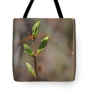 Leafing Out Tote Bag