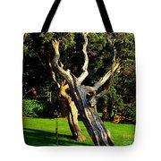 Leaning Cedars Of West Chop Tote Bag