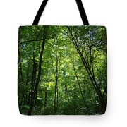 Leaning Into The Light Tote Bag