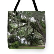 Leaning Live Oak Tote Bag
