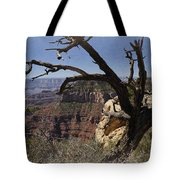 Leaning On The Everlasting Arms Tote Bag