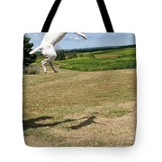 Leap Higher Tote Bag
