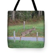 Leaping Buck In Smoky Mountains Tote Bag by Dan Sproul