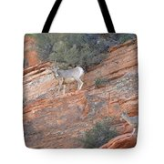 Learning How To Rock Climb Zion Tote Bag