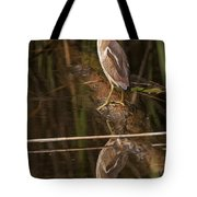 Least Bittern Pictures 17 Tote Bag