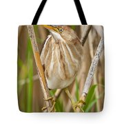 Least Bittern Pictures 35 Tote Bag