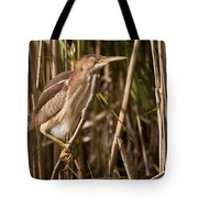 Least Bittern Pictures 7 Tote Bag
