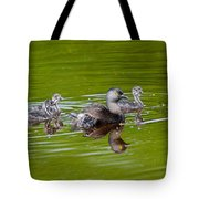 Least Grebe And Young Tote Bag
