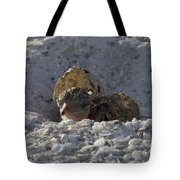 Least Tern Hatchling Tote Bag