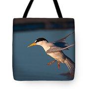 Least Tern In Flight Tote Bag