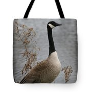 Leave Wildlife Wild And Alive Tote Bag