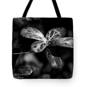 Leaves - Bw Tote Bag