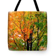 Leaves Changing Colors Tote Bag