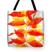 Leaves In Fall Tote Bag