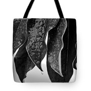 Leaves In Ice Tote Bag