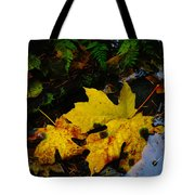 Leaves In Still Shallows Tote Bag