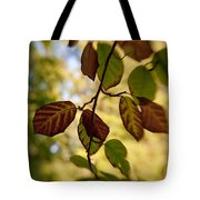 Leaves In The Breeze Tote Bag