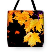 Leaves Of Maple Tote Bag