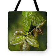 Leaves Of Three Tote Bag