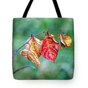 Leaving Summer Behind Tote Bag