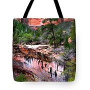 Ledge At Emerald Pools In Zion National Park Tote Bag