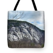 Ledge In New Hampshire Tote Bag