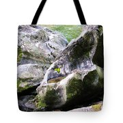Ledge Worn Smooth By Centuries Of Water And Ice Tote Bag