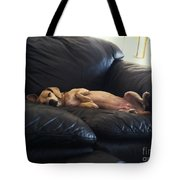 Leg Up Tote Bag