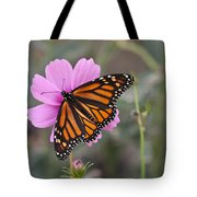 Legend Of The Butterfly - Monarch Butterfly - Casper Wyoming Tote Bag
