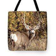 Legend Of The Fall Tote Bag