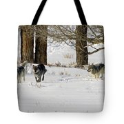 Legends Of The Lamar Valley Tote Bag