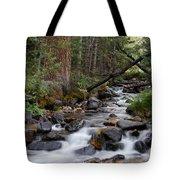 Lehman Creek In Great Basin National Park Tote Bag