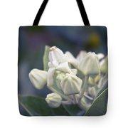 Lei Pua Kalaunu - Crown Flower - Calotropis Gigantea - Asclepiad Tote Bag