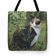 Leia Cat In Blueberries Tote Bag