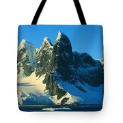 Lemaire Channel Antarctica Tote Bag