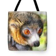 Lemur 004 Tote Bag