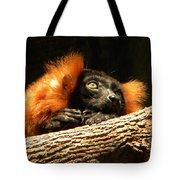 Lemur In Longing Tote Bag