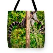 Lemur In The Green Tote Bag