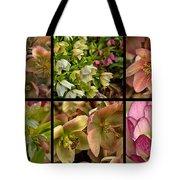 Lenten Rose Collage Tote Bag