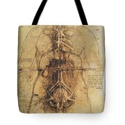 Leonardo: Anatomy, C1510 Tote Bag
