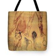 Leonardo: Legs, C1508 Tote Bag