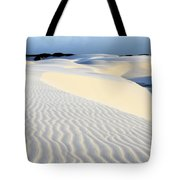 Leoncois Maranhenses Beauty Of Sand Tote Bag